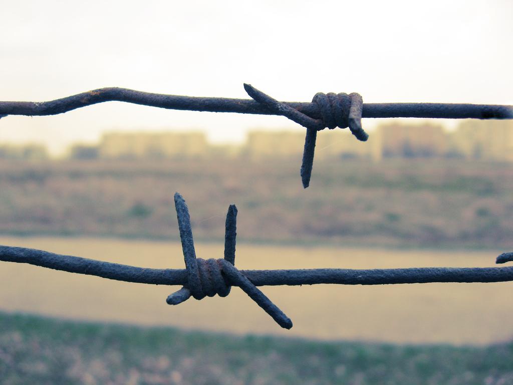 ВНацполиции прокомментировали последствия «закона Савченко»
