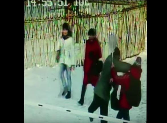 Милиция Нижнекамска разыскивает мужчину, избившего школьницу наулице