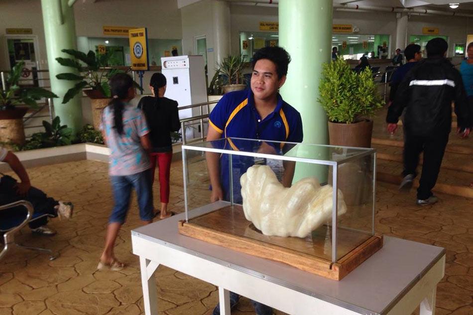 Филиппинский рыбак нашел жемчужину стоимостью $100 млн