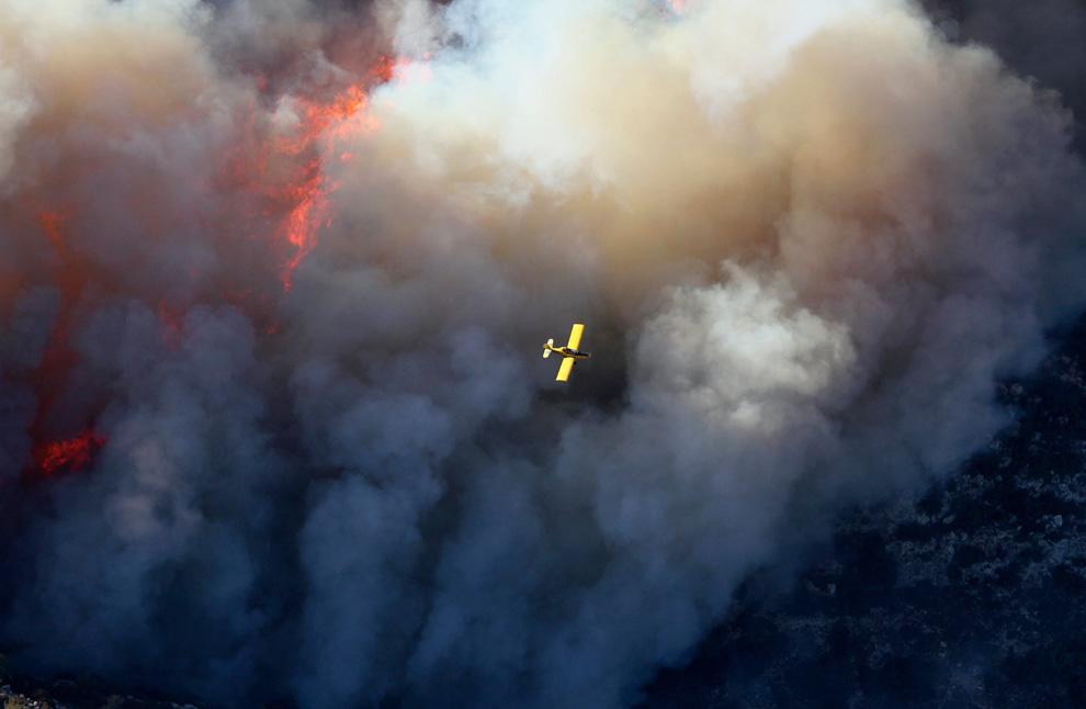 Порошенко: Израильское руководство наградило украинских спасателей, помогавших тушить пожар под Хайфой