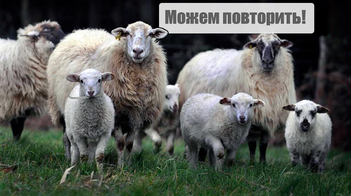 Нынешняя ситуация может подтолкнуть Россию бросить все и выйти с Донбасса с войсками, - Грымчак - Цензор.НЕТ 2390