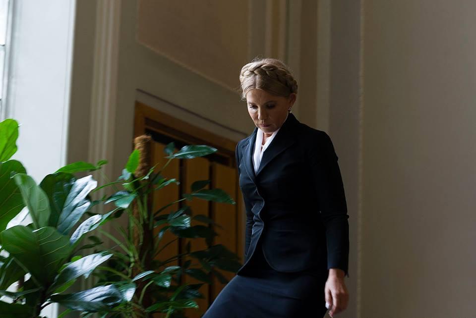 Живет наодну заработную плату: Тимошенко показала, сколько заработала в2014-м году