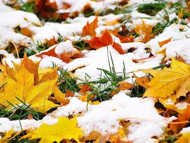 Ближайшая ночь будет самой холодной в столицеРФ сначала осени
