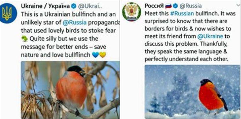 Умом не понять: Захарова пожаловалась на претензии Украины из-за снегирей