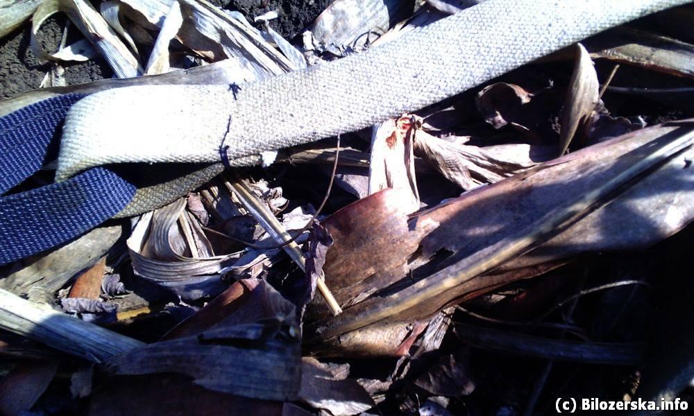 Российские террористы под Мариуполем дважды обстреляли силы АТО - Цензор.НЕТ 559